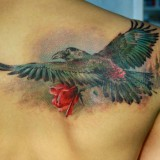 Ворон татуировка (raven tattoo) — 25 фото