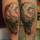 Татуировка-хорек — фото