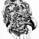Черно-белые эскизы летающих животных — 6 фото