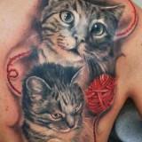 Коты на тату — 7 фото