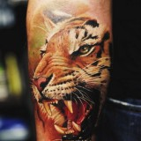 Тату тигра — 7 фото