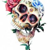 Цветной эскиз черепа — 6 фото