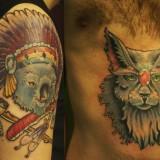 Коала и кот