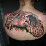 Татуировка совы на спине