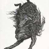 Эскизы животных (4 фото)