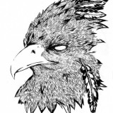 Эскизы для татуировок орла (6 фото)