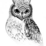 Значение татуировки: сова