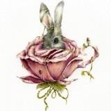 Тату эскиз: заяц в капусте