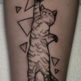 Геометрический кот