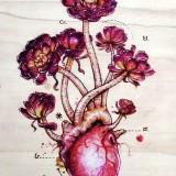 Эскизы сердца (7 фото)