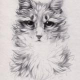 Эскиз кота (6 фото)