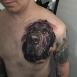 Тату собаки на груди