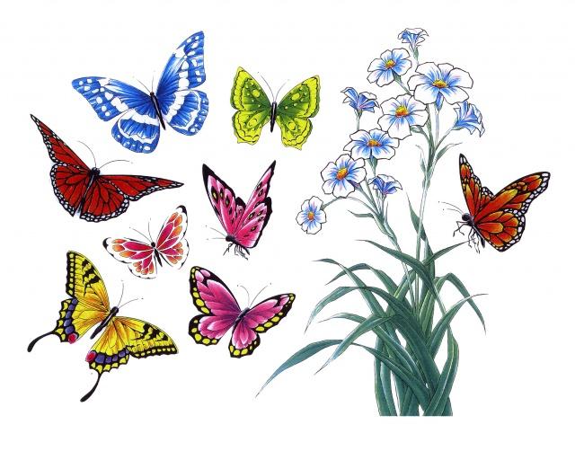татуировки бабочки