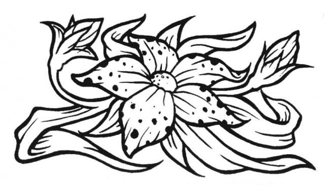 татуировки эскизы цветов (11)