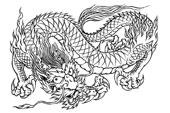 тату дракон (12)