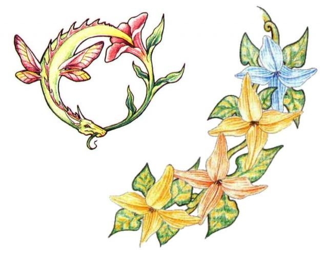 татуировки эскизы цветов (3)