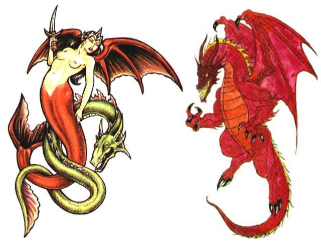 тату дракон (10)
