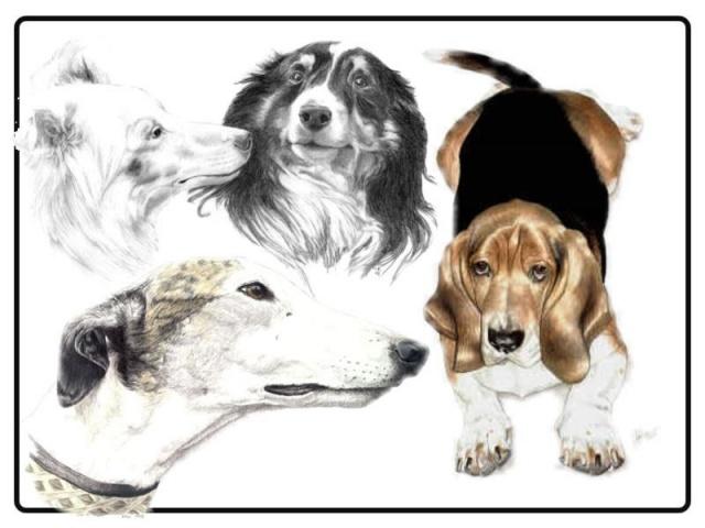 татуировки собак