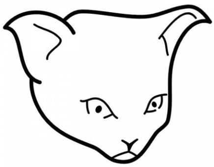 эскиз татуировка кот