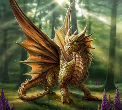 татуировка дракон (31)