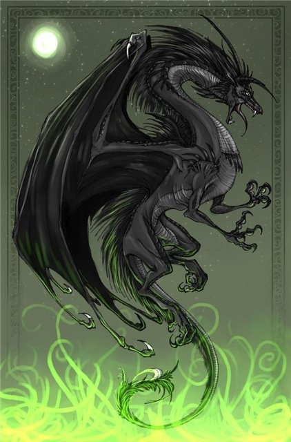 татуировка дракон (23)