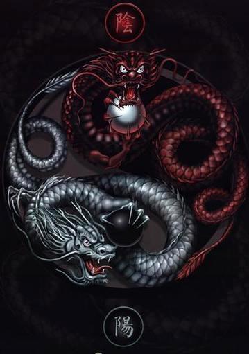 татуировка дракон (2)