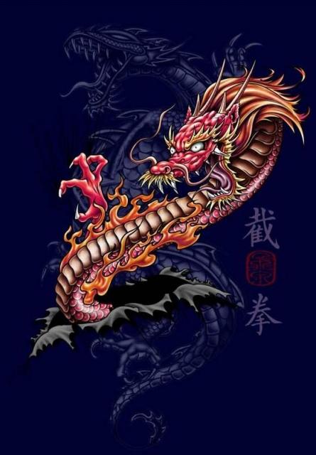 татуировка дракон (6)