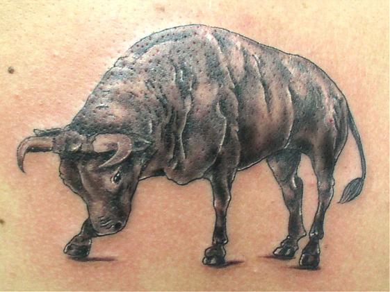 татуировка быка, барана и оленя (24)