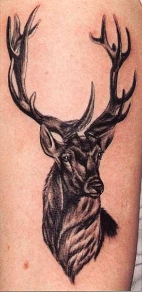 татуировка быка, барана и оленя (22)