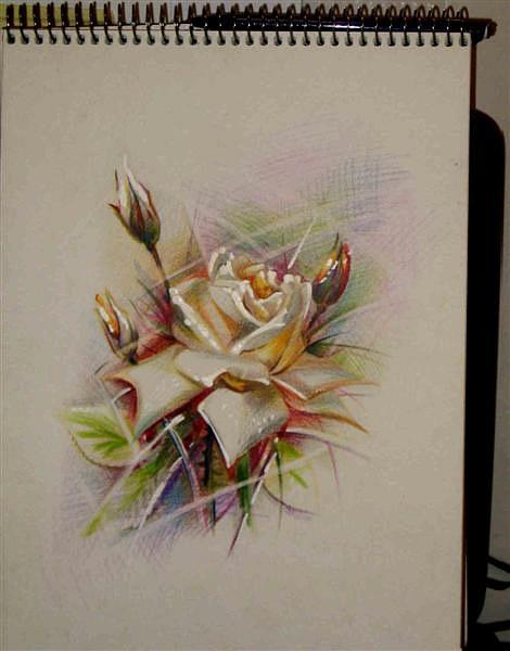 Татуировки и эскизы розы (44)