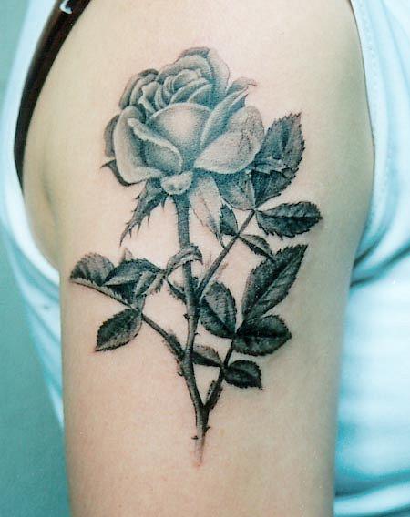 Татуировки и эскизы розы (42)