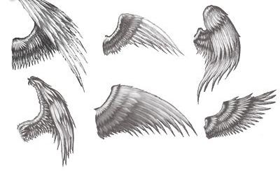 Эскизы татуировки крылья (7)