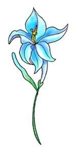 татуировка цветок фото