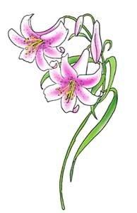 татуировки цветов фото