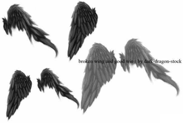 Крылья татуировки: эскизы и фото (4)