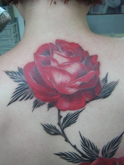 Татуировки и эскизы розы (30)