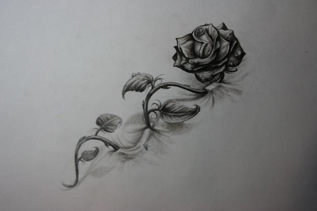Татуировки и эскизы розы (19)