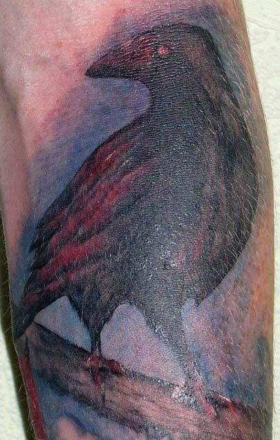 Ворон татуировка (7)