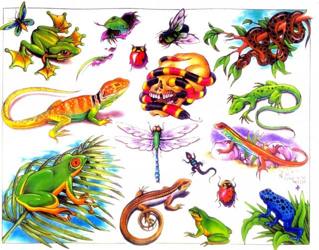 Цветные татуировки эскизы (5)