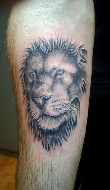 татуировка лев (14)