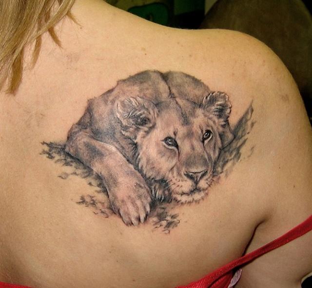татуировка лев (3)