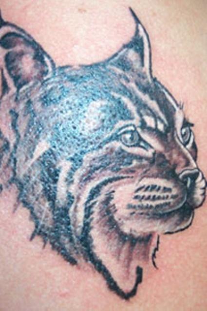 Татуировка рысь (5)