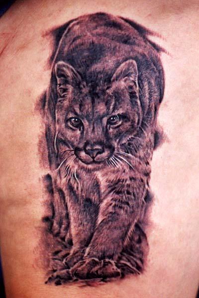 Татуировка рысь (4)