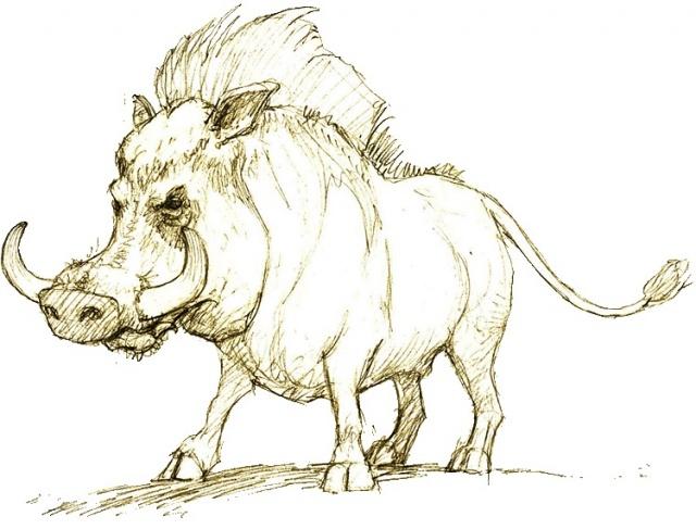 Татуировка эскиз кабан (tattoo wild boar) - 18 фото.