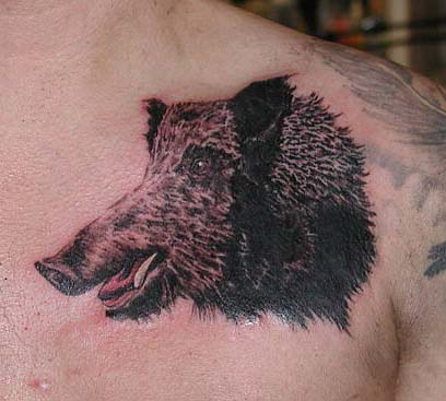 татуировка эскиз кабан (8)