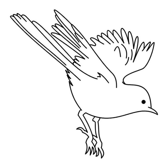 татуировки птицы (30)