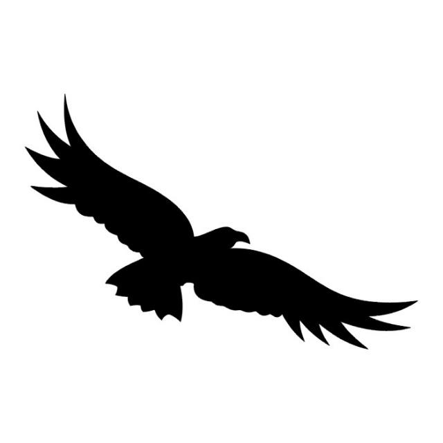 татуировки птицы (17)
