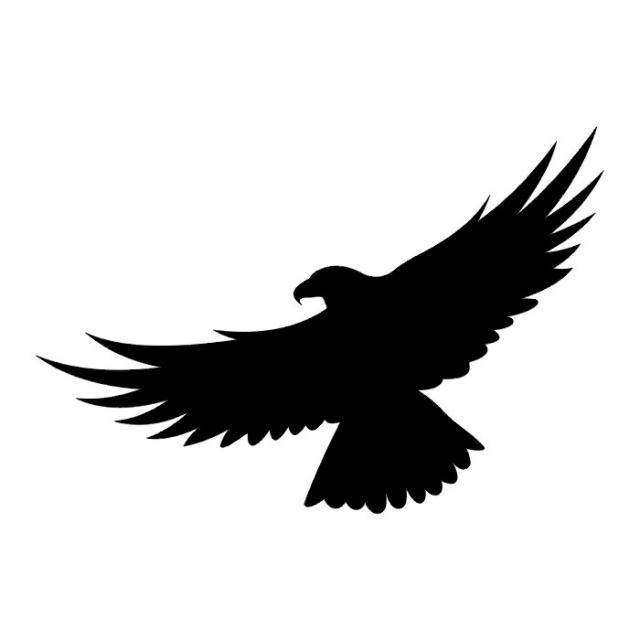 Татуировки птицы