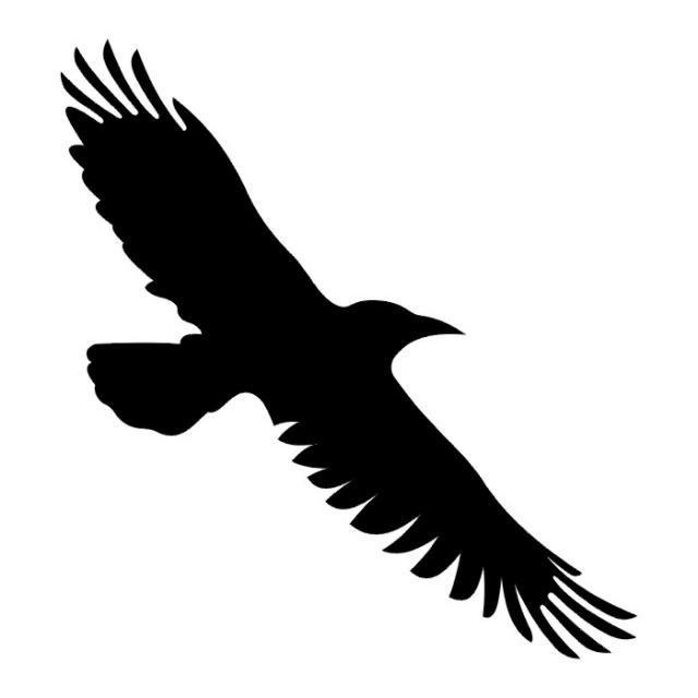 татуировки птицы (15)