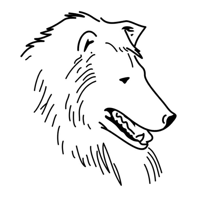 татуировки собак (10)
